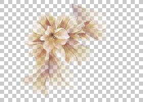蓝色水彩花,大丽花,三维空间,3D计算机图形学,水彩画,切花,粉红色