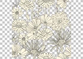 黑白花,花卉,黛西,植物群,视觉艺术,花卉设计,线路,插花,植物,植