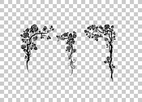 黑白花,黑白,绘图,线路,分支,黑色,树,文本,点,角度,对称性,叶,植