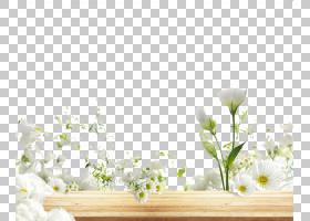 花卉图案背景,矩形,花卉,插花,模式,花,花卉设计,室内设计,花瓣,