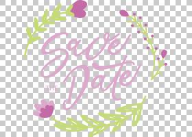 花卉婚礼邀请函背景,线路,花瓣,切花,文本,紫色,面积,书法,叶,植