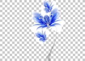 花卉背景,线路,关门,插花,紫罗兰,电蓝,花瓣,紫色,植物群,植物,花