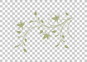 花卉背景,线路,插花,花瓣,分支,圆,叶,植物群,花卉设计,绿色,花,