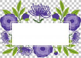 花卉背景,花卉设计,插花,植物群,花卉,植物,花,浪漫,免费,紫罗兰,图片
