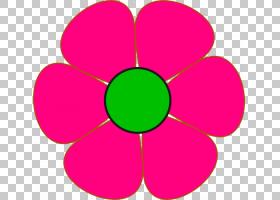 花卉背景自由,洋红色,圆,线路,符号,花瓣,对称性,紫色,免费,玫瑰,