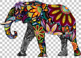 花卉装饰品,非洲象,保险杠贴纸,印度象,花卉设计,花,装饰,墙贴花,