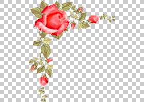 花束画,花卉,礼物,植物群,花卉设计,人造花,玫瑰家族,植物,红色,
