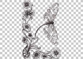 蝴蝶黑白,刷脚蝴蝶,机翼,传粉者,植物群,视觉艺术,黑白,花卉设计,