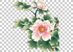花艺水彩画,草本植物,花束,一年生植物,大丽花,插花,切花,花卉,雏
