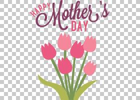 粉红色花卡通,洋红色,植物茎,爱,插花,花卉设计,花卉,郁金香,花瓣