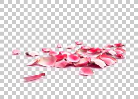 粉红色花卡通,洋红色,鞋,花瓣,花,心,粉红色,皮肤护理,手,个人护