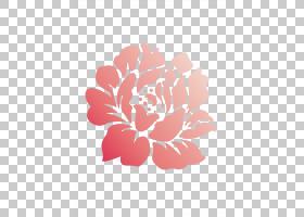 粉红色花卡通,花卉,植物群,视觉艺术,大丽花,插花,玫瑰家族,植物,