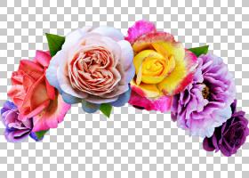 粉红色花卡通,花卉,花束,粉红色家庭,洋红色,插花,蔷薇,玫瑰秩序,