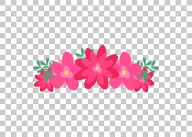 粉红色花卡通,花卉设计,洋红色,插花,花瓣,植物群,植物,粉红色,蓝