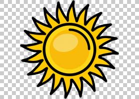 教育背景,葵花籽,线路,圆,向日葵,花,黄色,演示文稿,研究所,Prezi图片