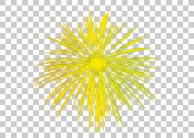 烟花卡通,圆,线路,树,花瓣,点,对称性,花,颜色,免费,黄金,黄色,烟