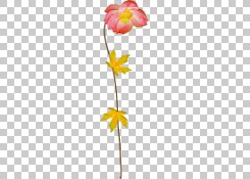 粉红色花卡通,黄色,植物群,植物,莲花瓣,植物茎,切花,叶,莲子,花,