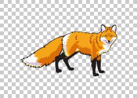 狐狸绘图,尾巴,口吻,野生动物,水彩画,绘图,狐狸,红狐,