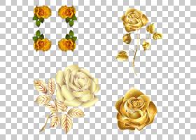 玫瑰金花,花瓣,身体首饰,玫瑰秩序,切花,黄色,金叶,玫瑰家族,冲刺