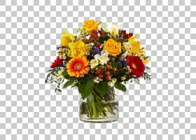 花卉背景,一年生植物,非洲菊,花瓶,植物,插花,黄色,德兰士瓦雏菊,