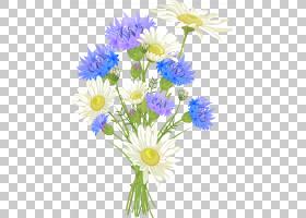 花卉婚礼邀请函背景,花卉,人造花,一年生植物,牛眼雏菊,插花,黛西