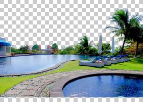 旅行蓝色背景,景观美化,槟榔,财产,房地产,共管公寓,反射池,水,休