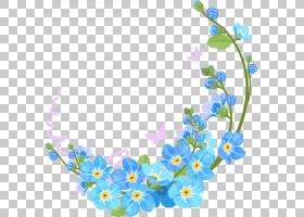 蓝花边框和框架,花卉设计,切花,分支,植物群,身体首饰,花瓣,开花,