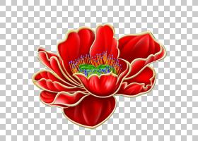红色水彩花,花卉设计,切花,花瓣,植物,水彩画,想法,绘画,花,红色,