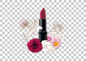 红花,花瓣,花,洋红色,羊毛脂,油,个人护理,基础,化妆,红色,奶油,