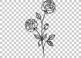 黑白花,树,植物群,视觉艺术,花卉设计,线路,传粉者,白色,植物茎,