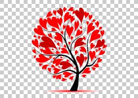 黑白花,细枝,植物,爱,植物茎,黑白,花瓣,线路,植物群,分支,木本植