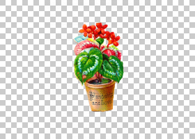 红花,植物,数字剪贴簿,红色,室内植物,花,花盆,