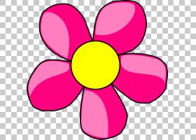 粉红色花卡通,洋红色,圆,黄色,线路,切花,粉红色,普通向日葵,粉红