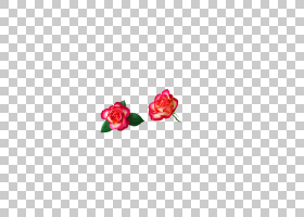 粉红色花卡通,洋红色,花瓣,玫瑰秩序,切花,身体首饰,玫瑰家族,花