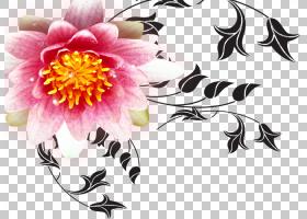 粉红色花卡通,花卉设计,大丽花,插花,花卉,植物群,植物,粉红色,玫