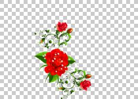 粉红色花卡通,粉红色家庭,玫瑰秩序,花盆,玫瑰家族,花瓣,花卉,植