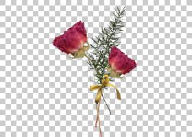 粉红色花卡通,静物摄影,粉红色家庭,芽,植物茎,插花,分支,花卉,玫