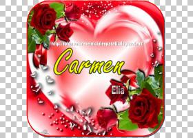 红玫瑰花架,浪漫,蛋糕装饰,花卉设计,插花,贺卡,花卉,花瓣,植物群图片