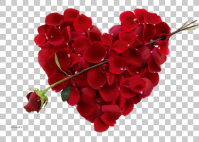 爱的背景心,花卉,切花,花瓣,花,红色,礼物,浪漫,爱,心,愿望,二月图片