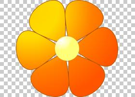 圆形花,线路,橙色,圆,黄色,花瓣,对称性,颜色,花园里,花束,红色,
