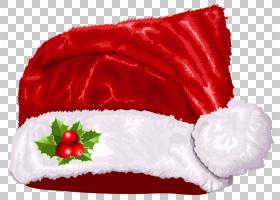 圣诞帽卡通,玫瑰家族,玫瑰,花瓣,花,红色,文档,帽子,圣诞老人服,图片