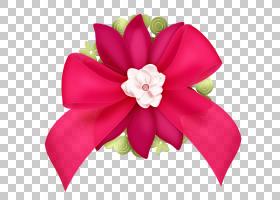 圣诞花圈图,凤仙花,发饰,头盔,植物,洋红色,花,红色,粉红色,花瓣,