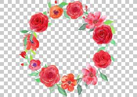 粉红色花卡通,圣诞装饰,玫瑰秩序,山茶花,玫瑰家族,植物,粉红色,