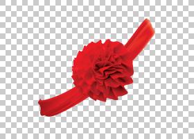 婚礼花卉背景,红色,花,花瓣,红花,婚姻,男人,色带,免费,丝绸,中国图片
