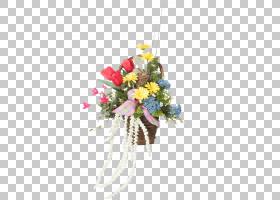 圣诞礼物卡通,圣诞装饰,玫瑰秩序,圣诞装饰品,玫瑰家族,植物群,花
