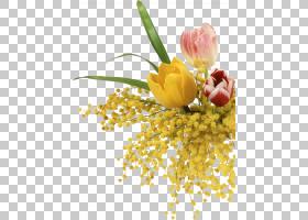春花,花卉,花束,插花,切花,花卉设计,黄色,花瓣,春天,植物,敏感植