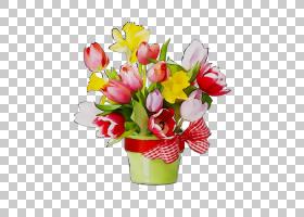 春花,多年生植物,野花,秘鲁百合,花瓣,红掌,百合家族,插花,粉红色