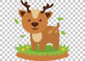 驯鹿卡通,小狗,尾巴,驯鹿,口吻,野生动物,鹿角,动物,梅花鹿,卡通,