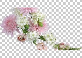 春花,人造花,分支,春天,花瓣,开花,植物,插花,粉红色,科尔特岛(Fl