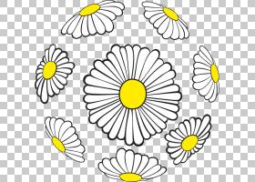 黑白花,花卉,植物茎,面积,花瓣,对称性,线条艺术,线路,切花,向日